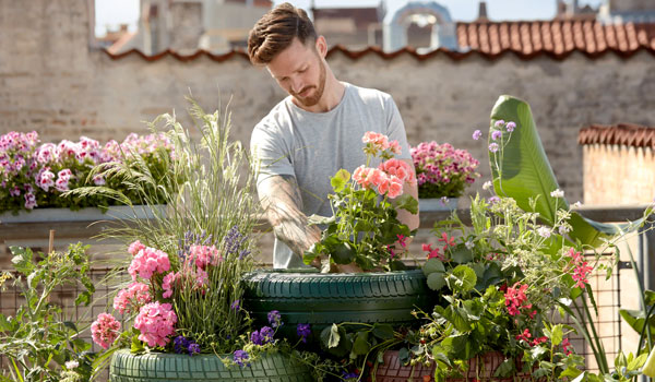 Post Image How Gardening Can Reduce Stress Improves mental stress - How Gardening Can Reduce Stress